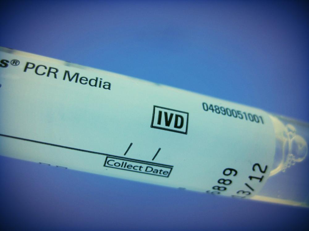 PCRtube.jpg