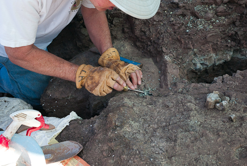 Larry removing a part of the fossil