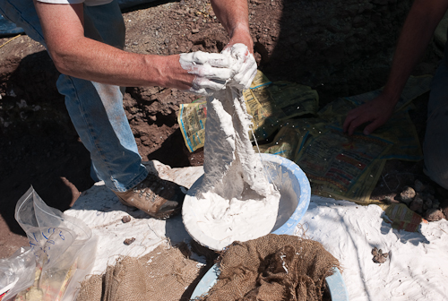fossil-090603-L9991092