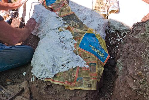 fossil-090603-L9991122