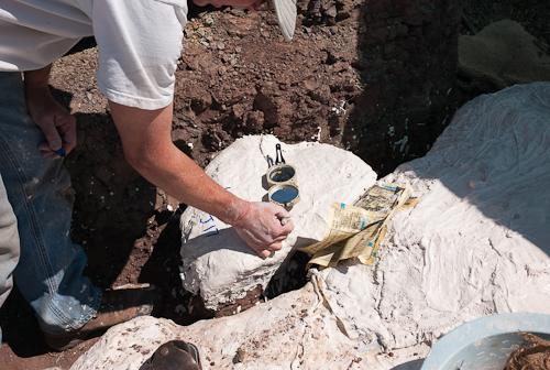 fossil-090603-L9991134