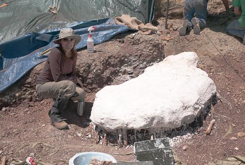fossil-090603-L9991155