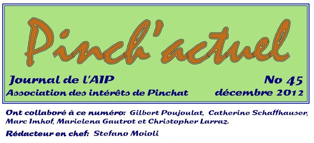 pinchactuel 45.jpg