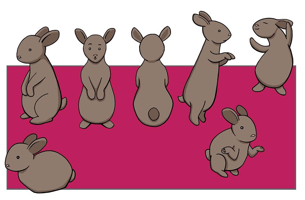 BunnyDraft02.jpg