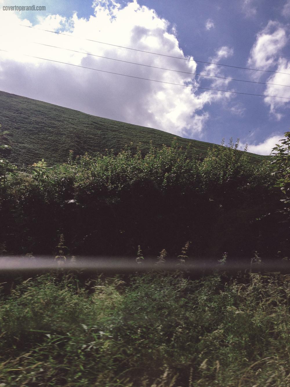 Covert Operandi - 2014 Wales-5.jpg