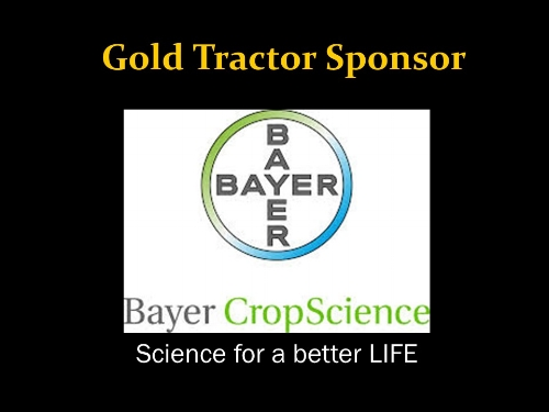 bayer gold.jpg