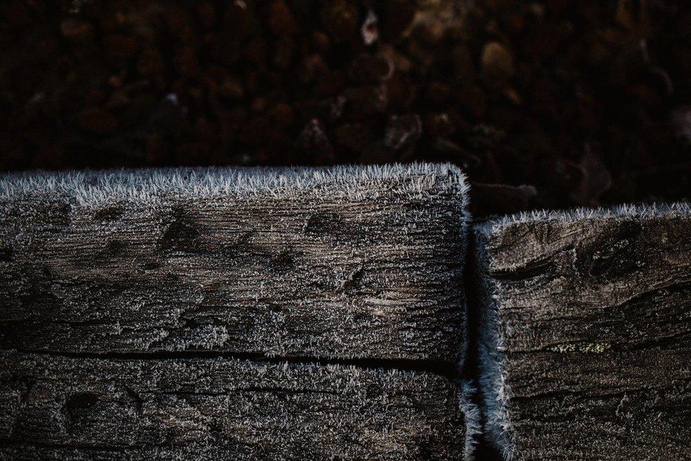 portland frost.jpg