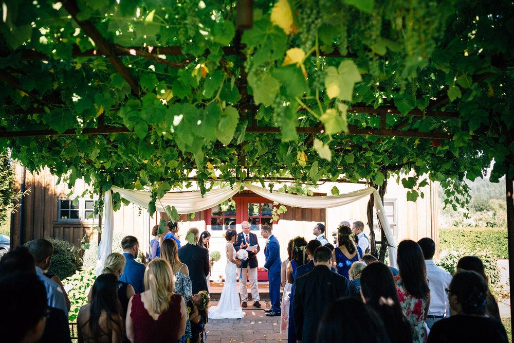 Beacon hill winery wedding photographer Oregon destination034.JPG