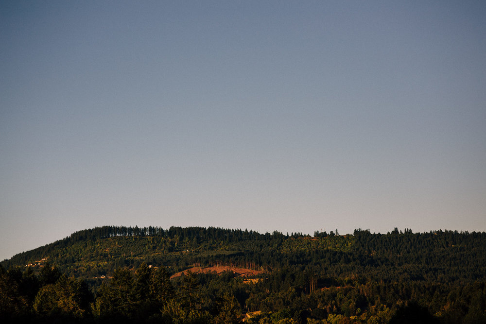 Beacon hill winery wedding photographer Oregon destination086.JPG