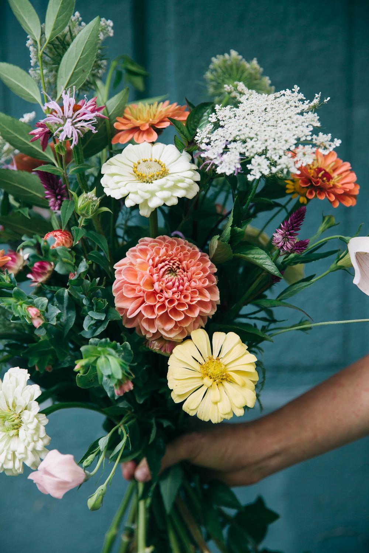 humbleflowers_01.jpg
