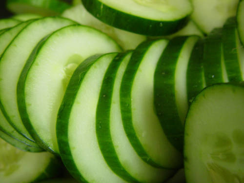 Glossary Of Legal Terms >> The Huge Benefits Of Cucumber That Many CKD Patients Are