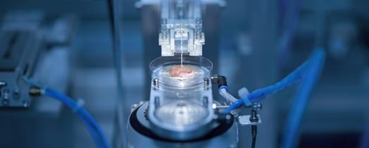 regenerative-medicine.1351179437867.jpg