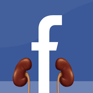 "Let me guess: You have a Facebook Page to ""Find a Kidney,"" but no leads. Are you tired of waiting? Contact us, we want to help YOU find the donor you've been waiting for. Contact Us."