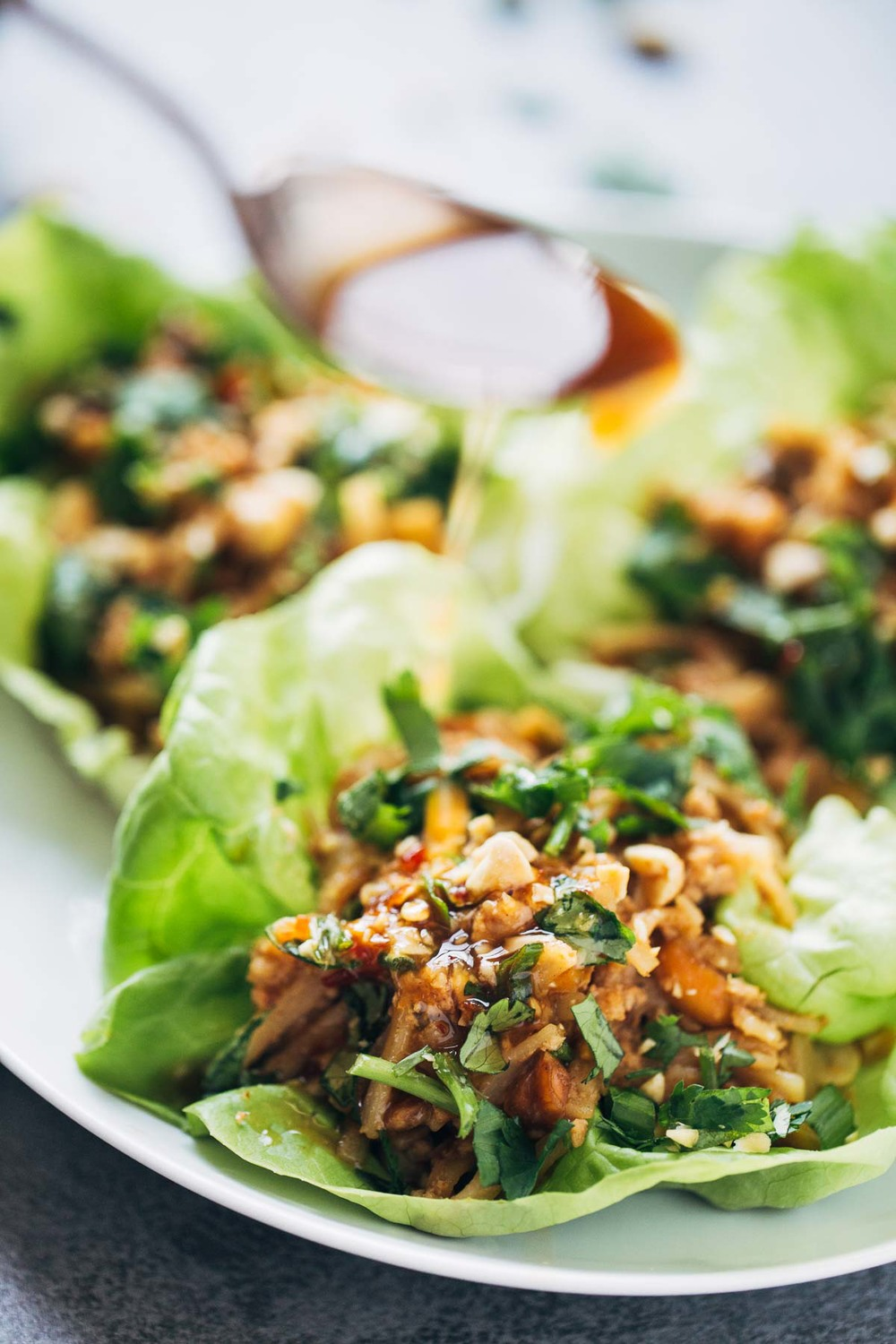 Chicken-Lettuce-Wraps-3.jpg