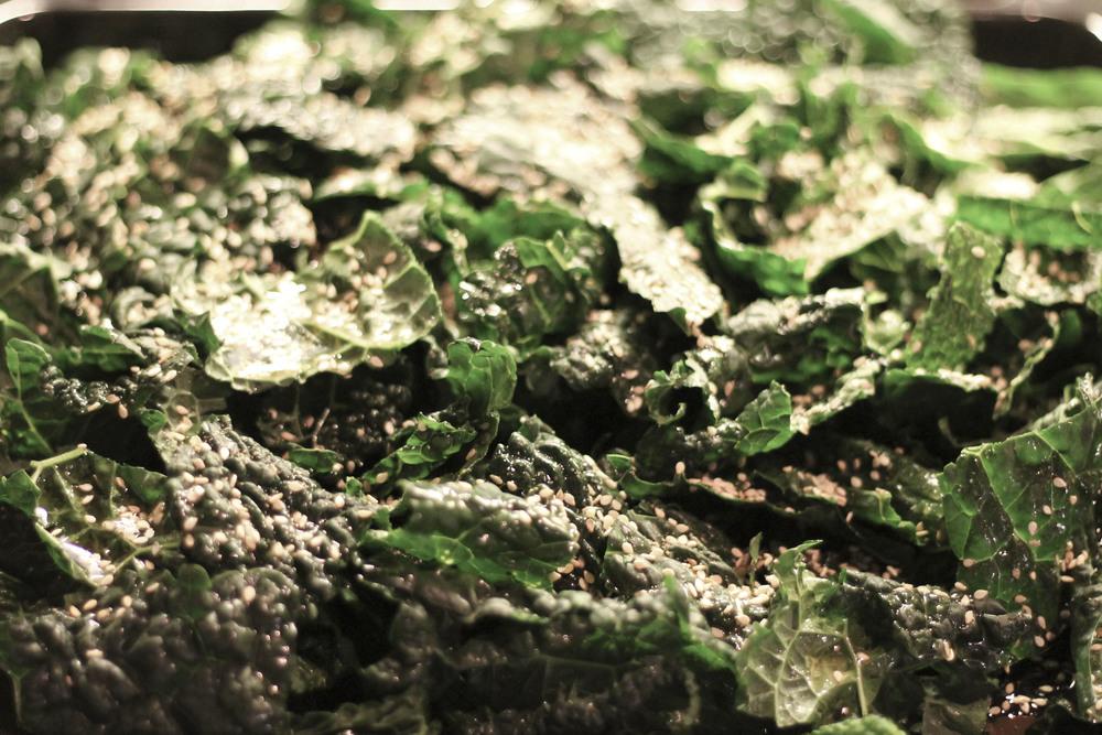 Kale Grünkohl 117.jpg