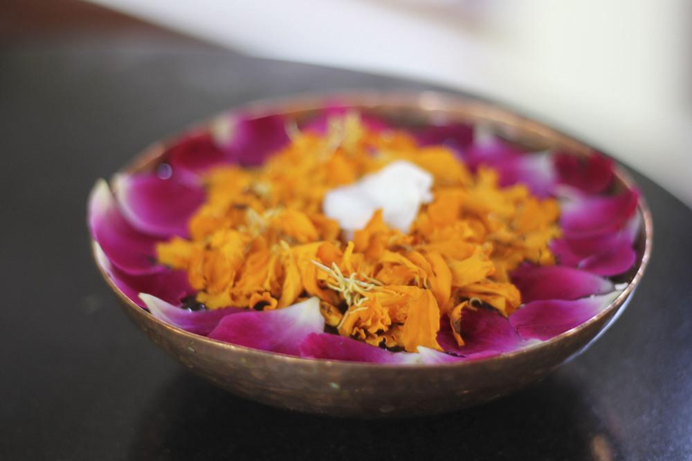 anandaspa himalayas india ayurveda1612.jpg