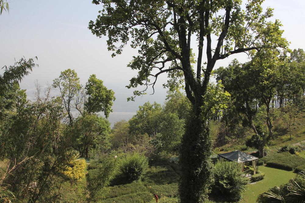 anandaspa himalayas india ayurveda1623.jpg