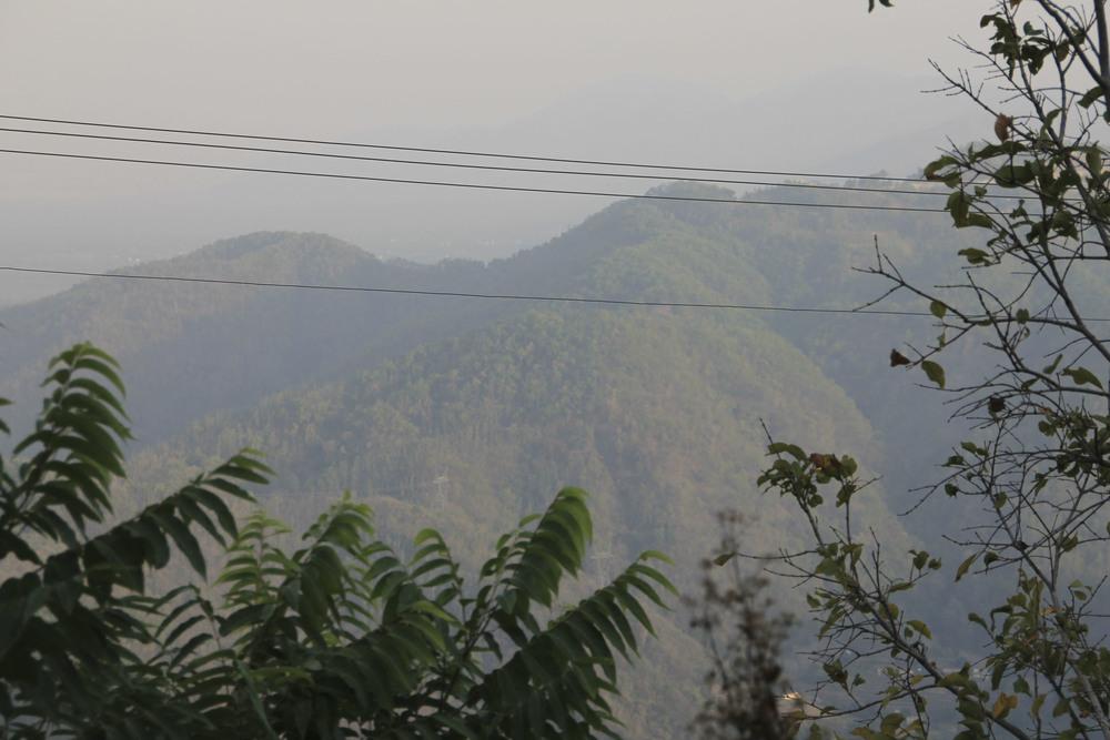 anandaspa himalayas india ayurveda1644.jpg