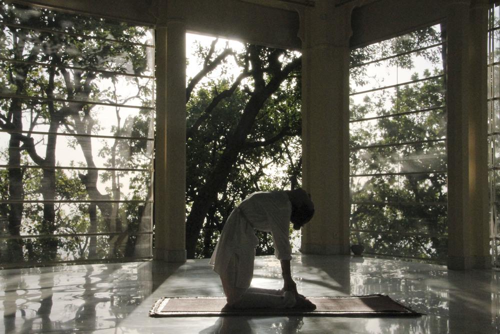 ananda spa himalayas india1606.jpg