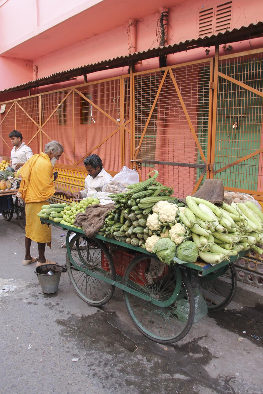 anandaspa himalayas india ayurveda1637.jpg