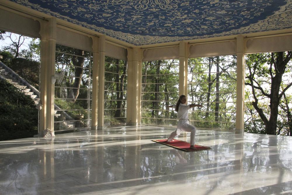 special ananda spa himalaya ayurveda yoga1854.jpg