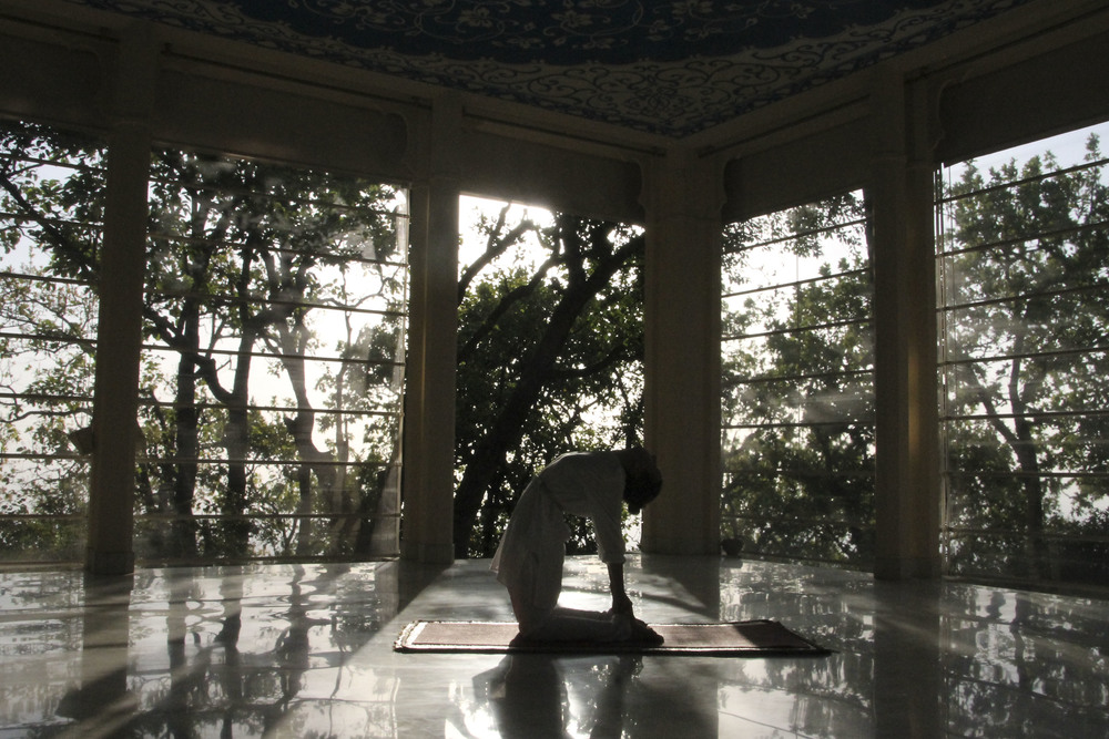 special ananda spa himalaya ayurveda yoga1855.jpg