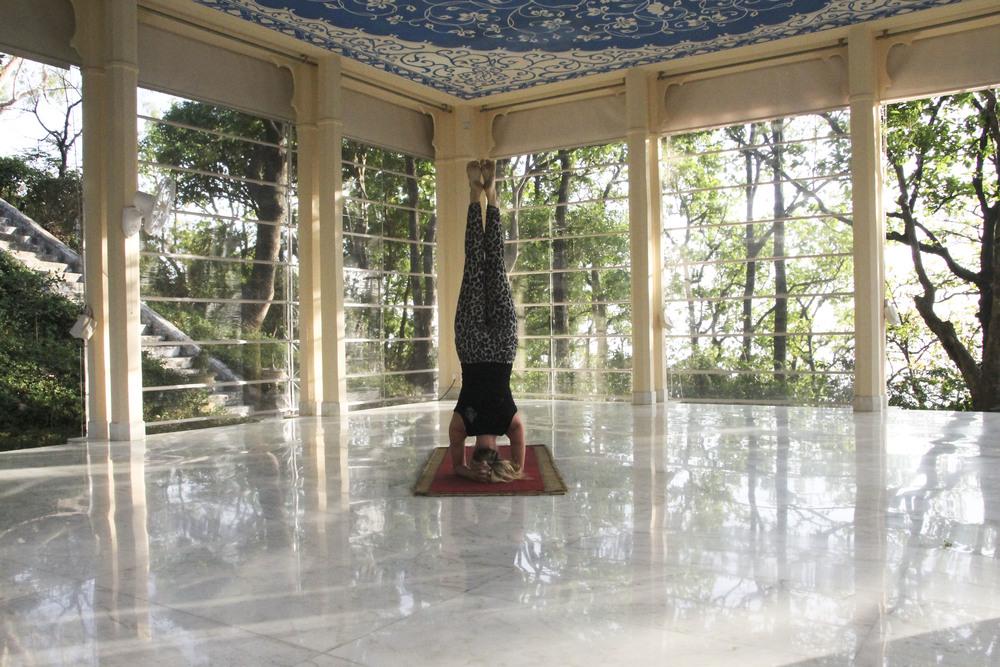special ananda spa himalaya ayurveda yoga1866.jpg