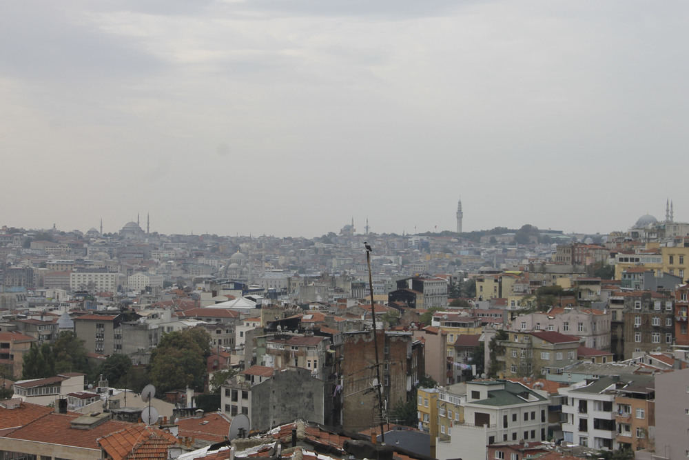 Istanbul, ygatonic on tour, Turkey yoga in istanbul2223.jpg