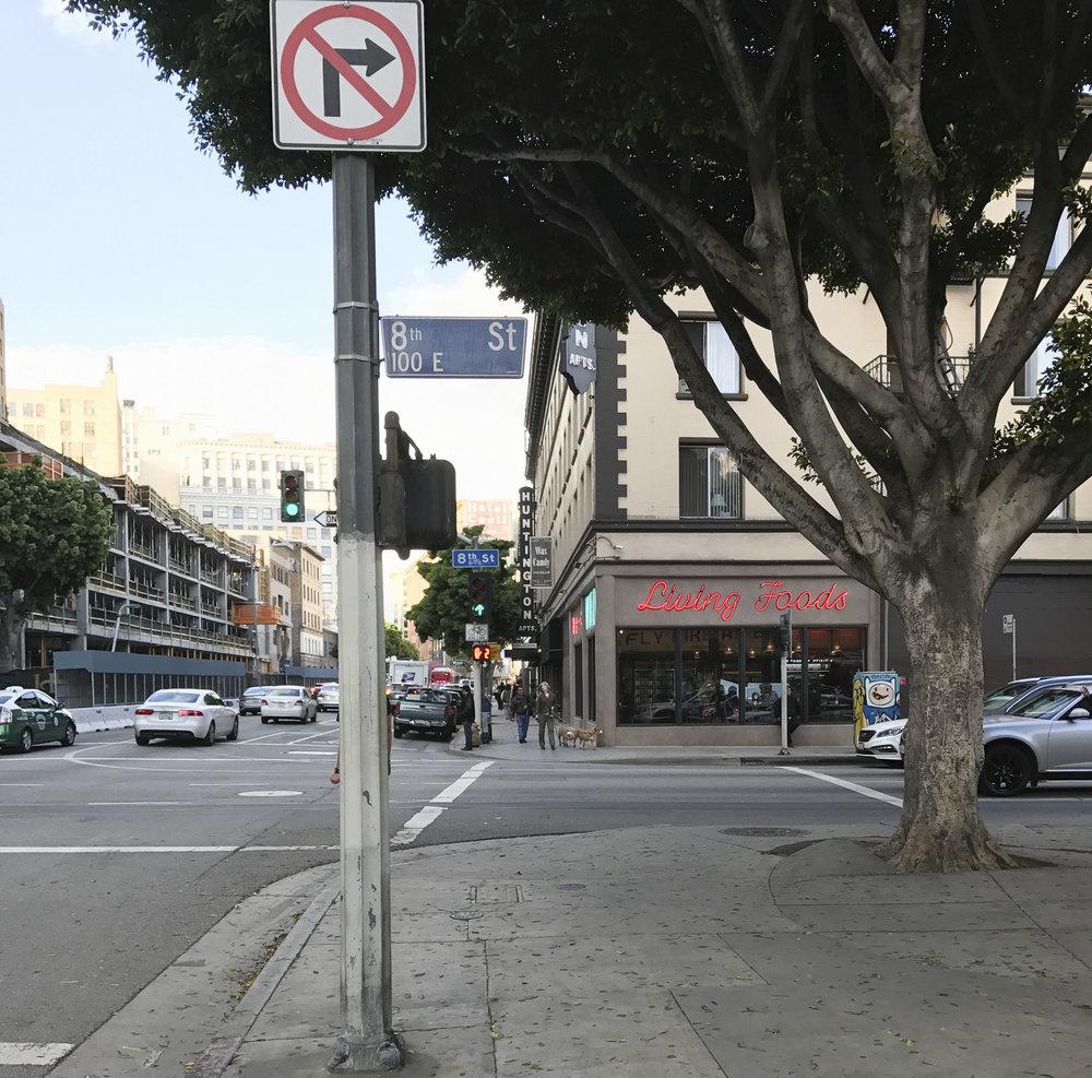 Wild Food Downtown Los Angeles_8.JPG