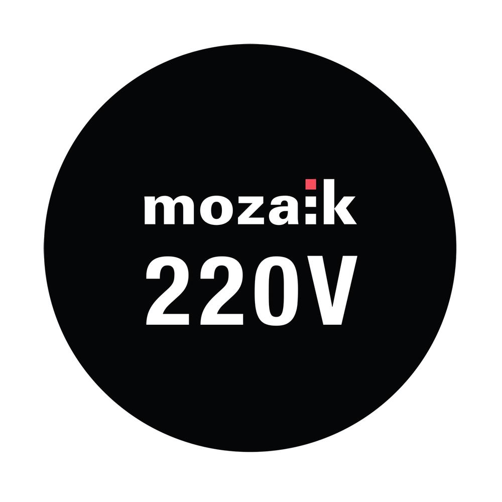 220V LOGO.jpg