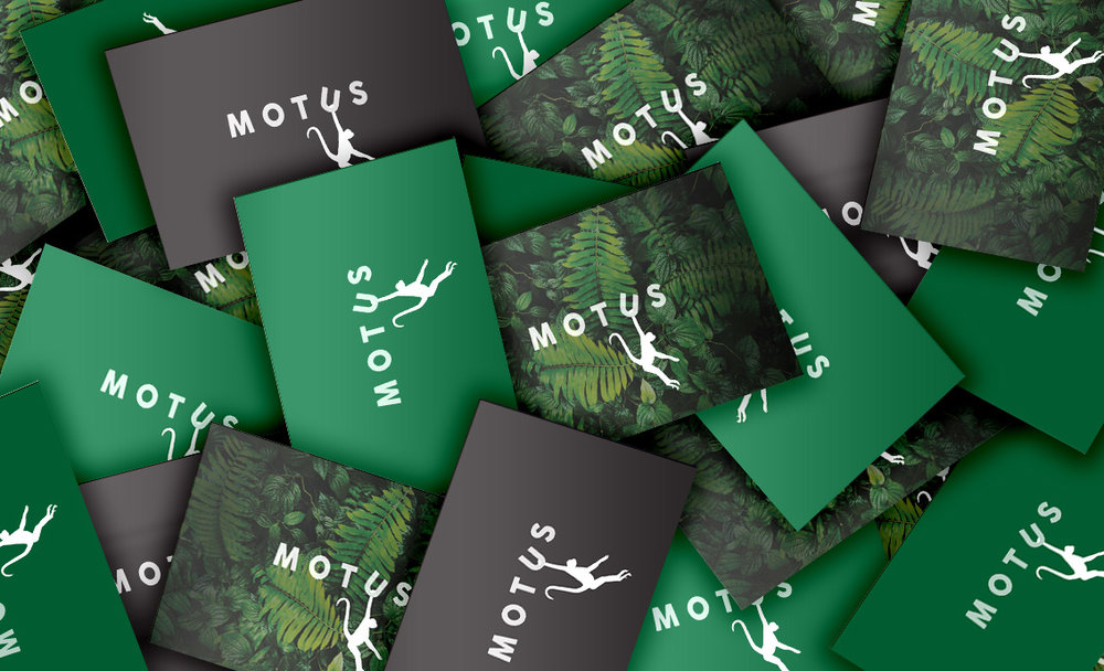 MOTUS_MOCK UP_BUSINESS CARDS_bundle.jpg