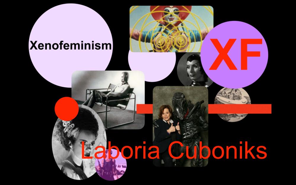 Laboria Cuboniks image.png