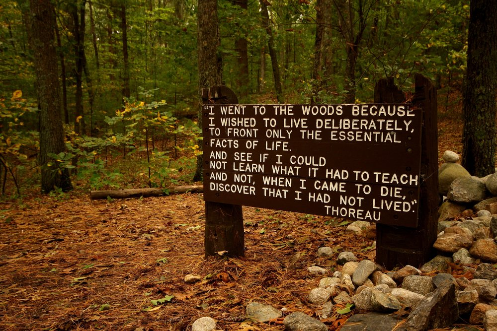 Thoreaus_quote_near_his_cabin_site,_Walden_Pond.jpg