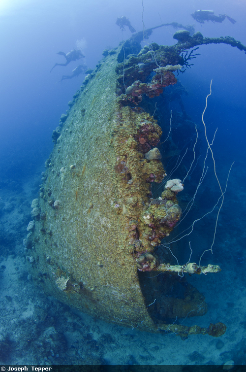 The Teshio Maru is the largest known wreck in Palau, whose large bow cuts through the gloomy waters of the inner lagoon.