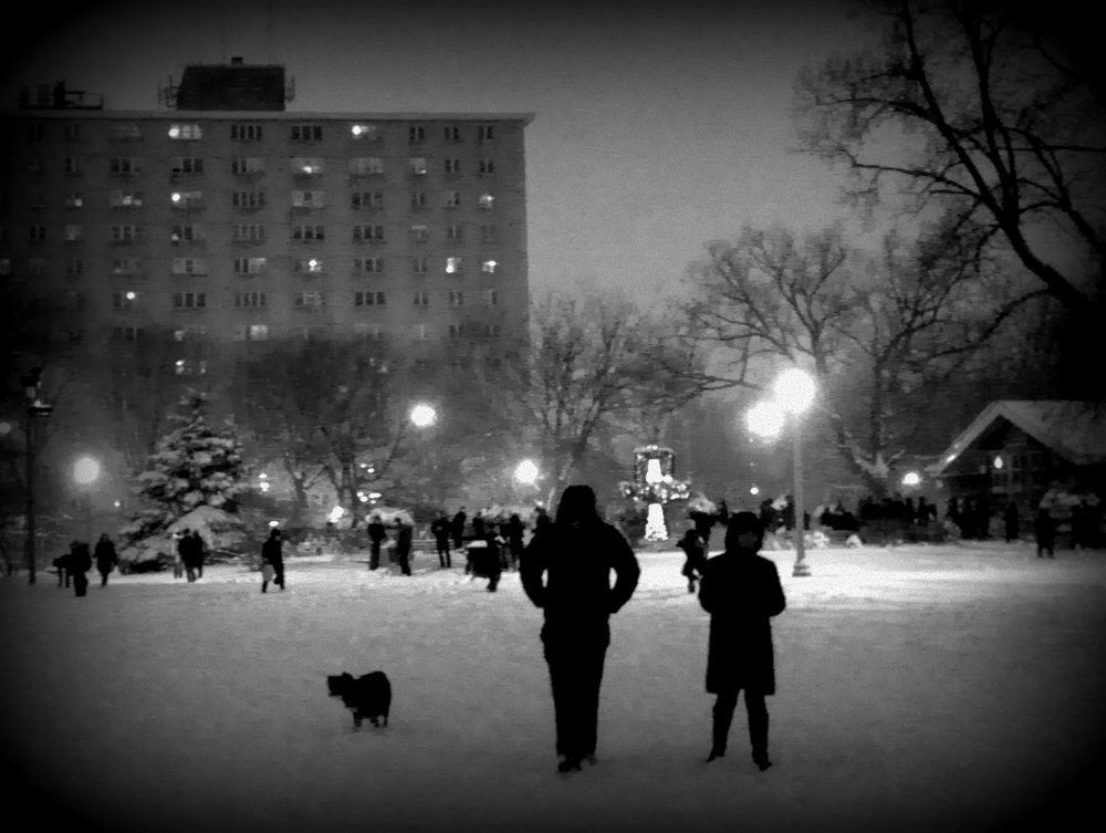 Wicker Park just before Snowbrawl.