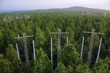 duke-forest.jpg