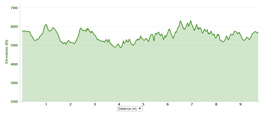 Little River has a pretty forgiving elevation chart, so I hoped it would be a safe choice for a first trail race.