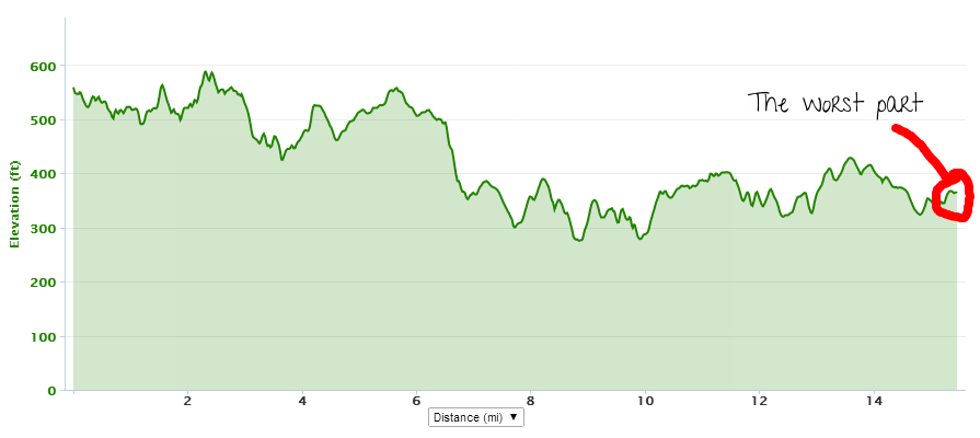 I laughed when I checked the elevation chart later: the actual hills felt like nothing compared to that last little hill before the finish.