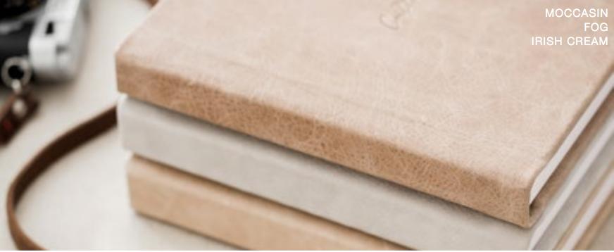 Leather Fabric Flush Album2.jpg