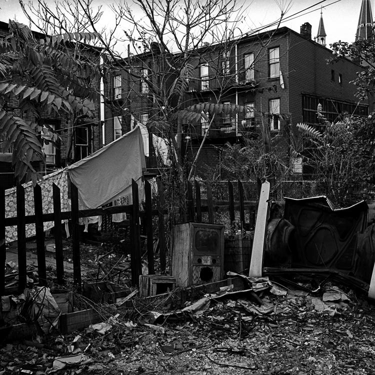 #7 backyard.jpg