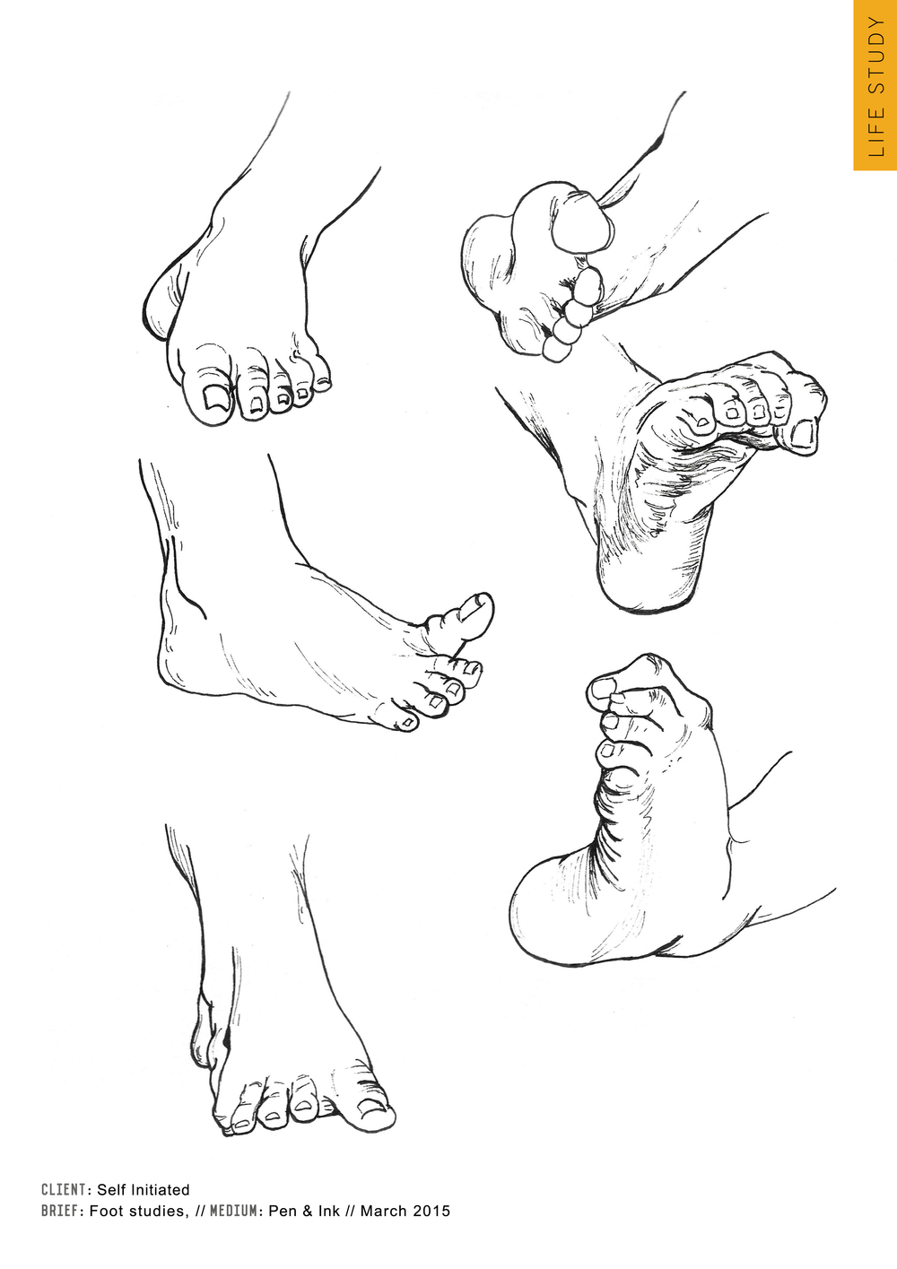Medical Art Education Trust - ink studies of the foot