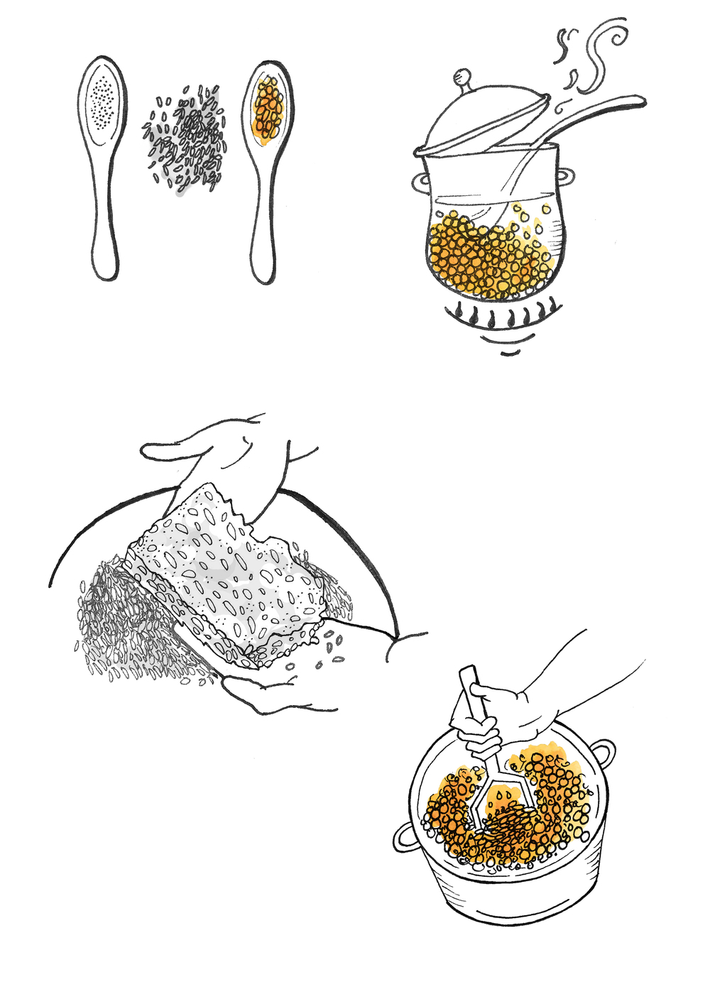 MAKING MISO AT HOME 1.jpg