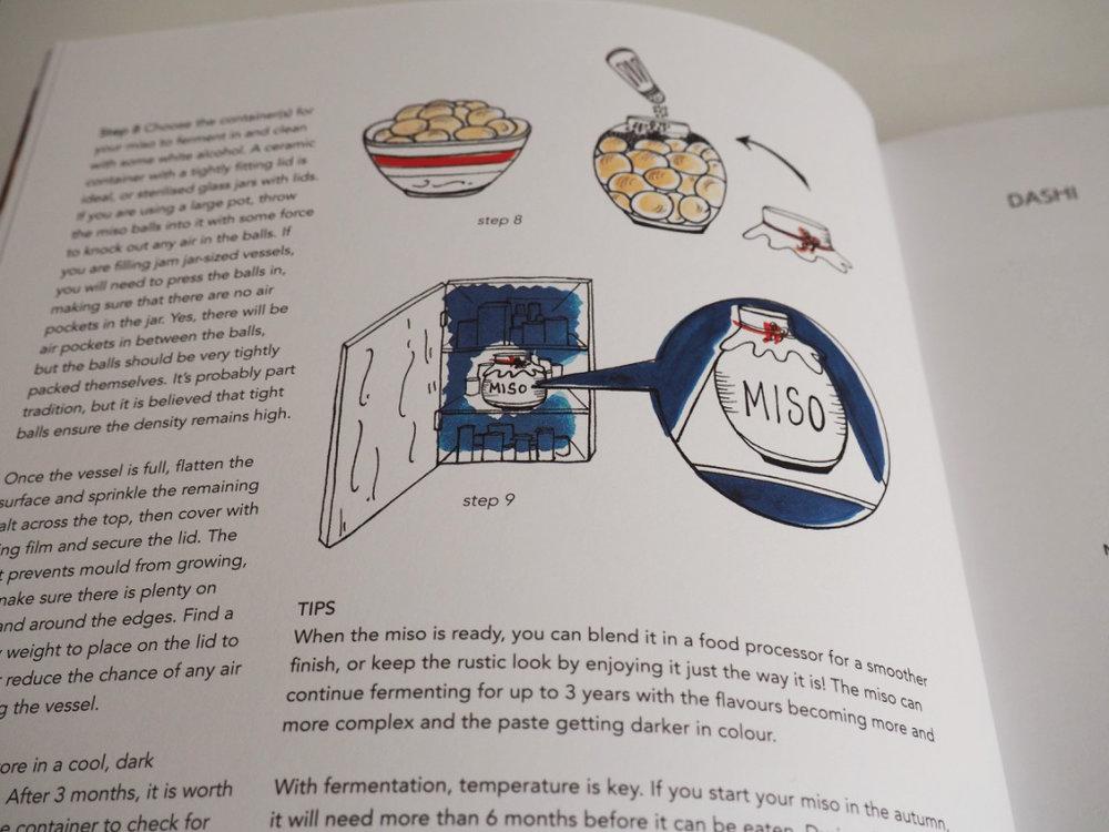 miso inside 2.jpg