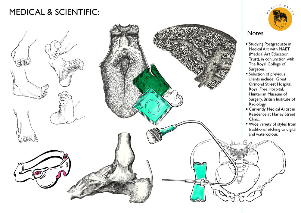 Medical Illustration obs app page.jpg