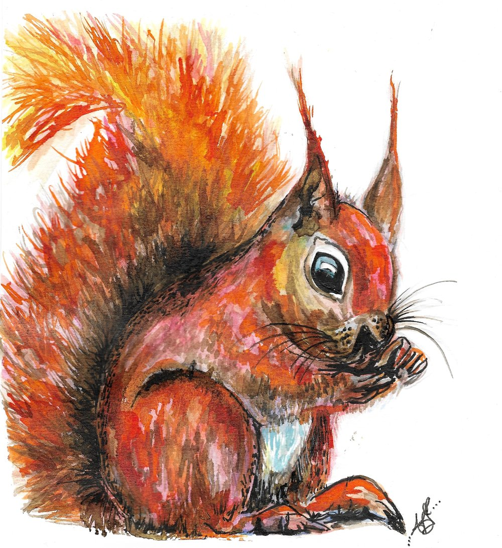 """Ruby-Roo the Red Squirrel"" (2017)"