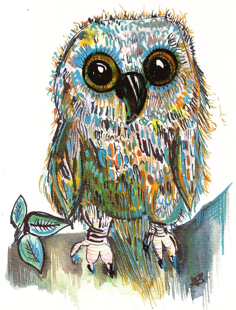 """Tootsie-The Baby Barn Owl"" (2014)"