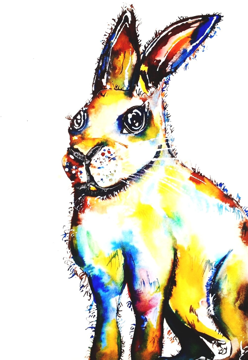 """Harry Hare Junior"" (2014)"