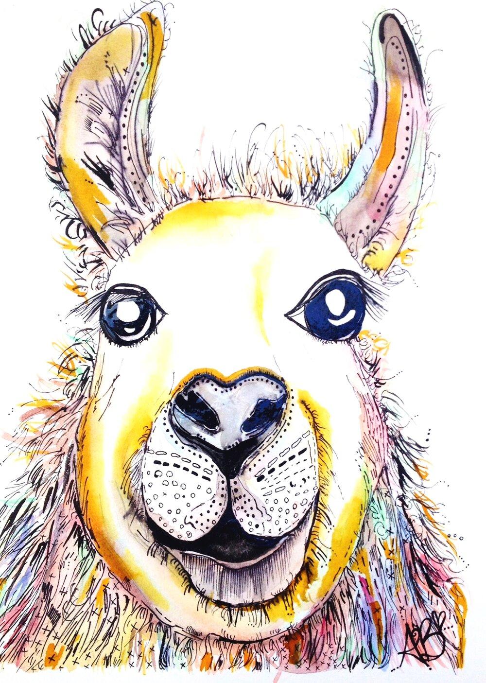 """""""Mr Llama"""" (2014)"""