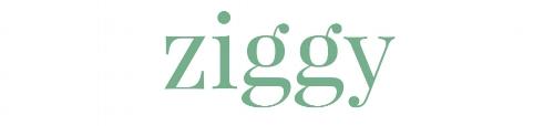 Ziggy Logo - Instagram.jpg