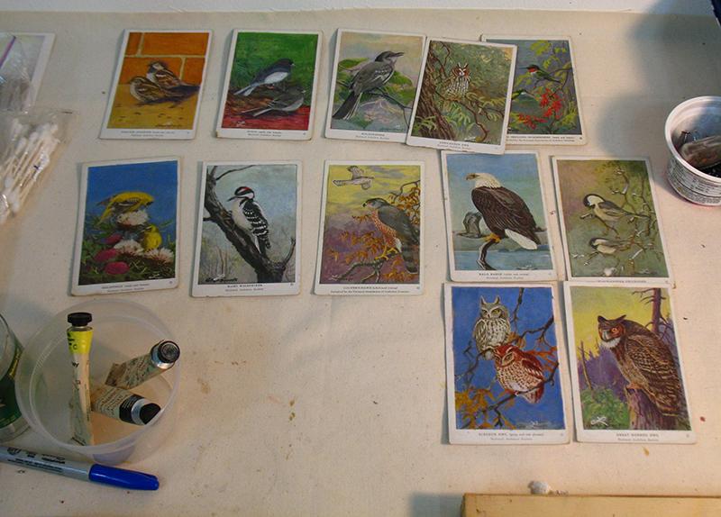 birdcard_table.jpg